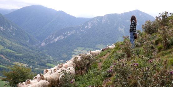 Bergère en Haut Béarn